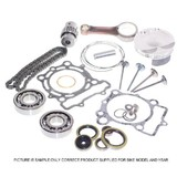 SUZUKI RMZ250 COMPLETE ENGINE PARTS REBUILD KIT  2010 -2011